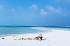 Gaafaru bikini beach white sand