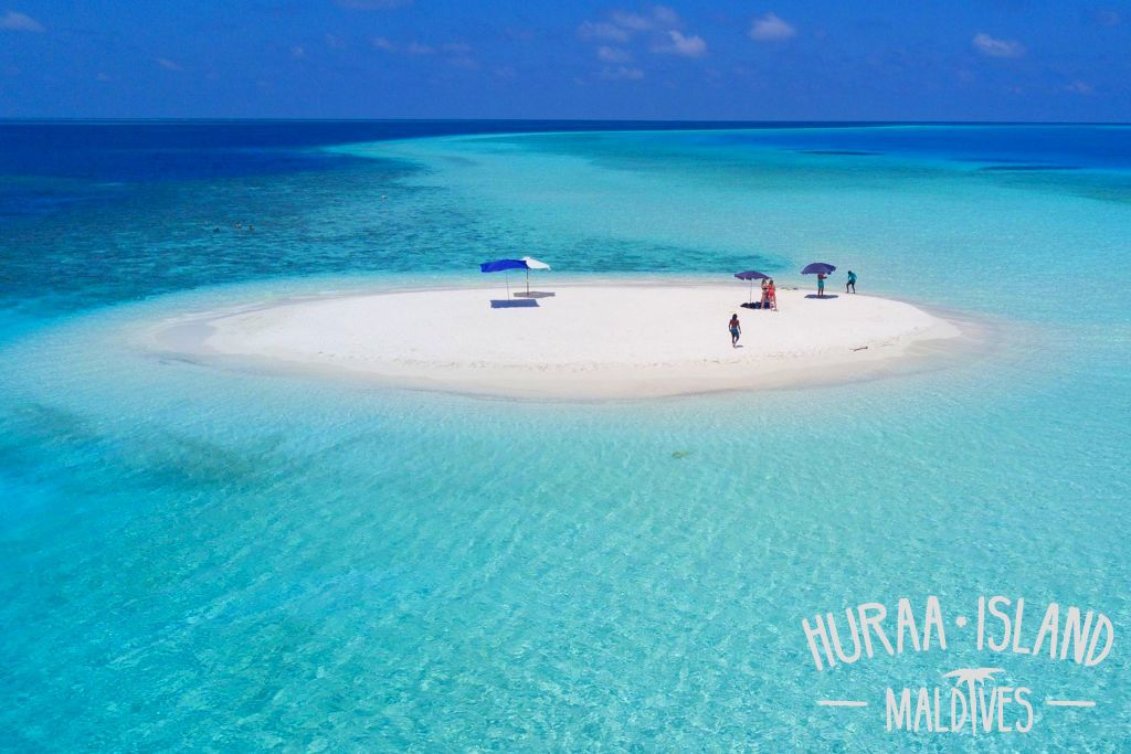 Best Island For Snorkeling With Dolphins