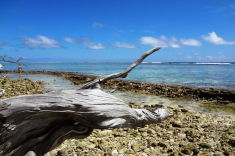 Maldives vacation - beach