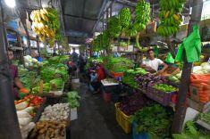 fruit-Male-Maldives