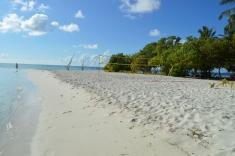 Maldives Beach 4