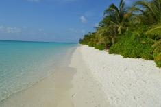 Maldives Beach 5